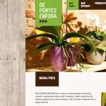 Disseny web: pàgines web amb textures