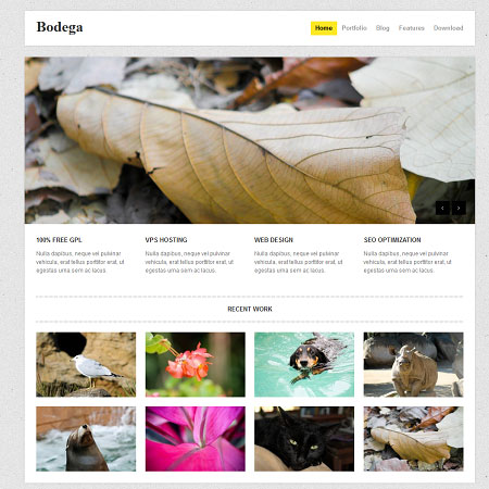 tema-wordpress-gratuit